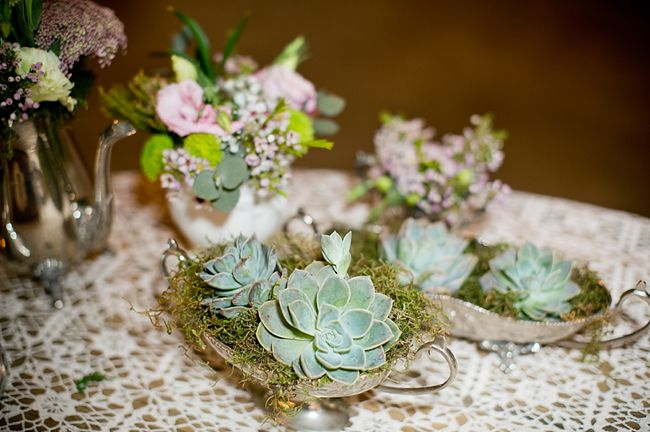 650x432xSucculent-Love-South-African-Farm-Wedding-22.jpg.pagespeed.ic.bXc6CteaVR