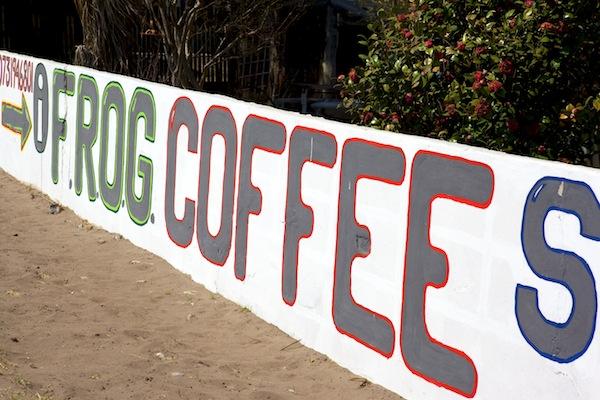 FROG COFFEE SHOP